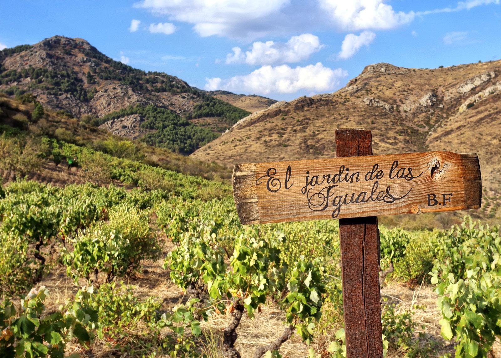 El jard n de las iguales bodegas frontonio for Bodegas de jardin chile